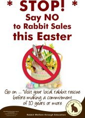 STOP, say no to rabbits this easter